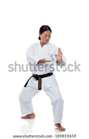 Karate master posing on white background - stock photo