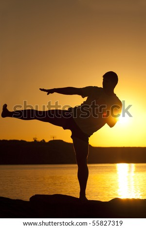 karate on the sunset - stock photo
