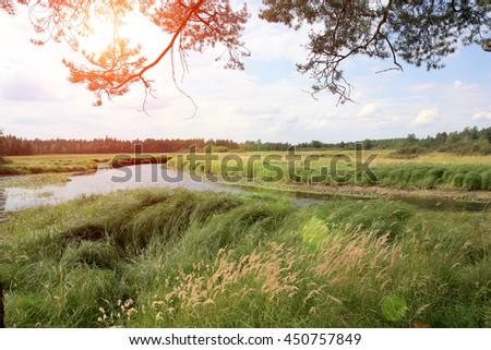 Karelia. A summer landscape on the river.