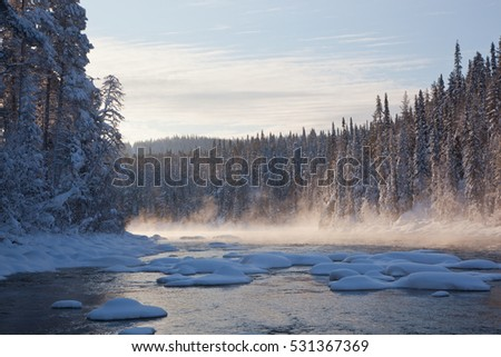 Karelia, the snow-covered pine park Paanajrvi