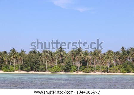 KARIMUNJAWA, INDONESIA - SEPTEMBER 02, 2017: Beach and the Coconut Trees Wonderful View