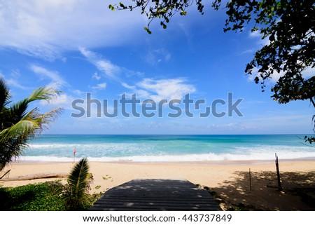 Karon beach in Phuket Thailand,  Chadow silhouette tree in foreground.   - stock photo