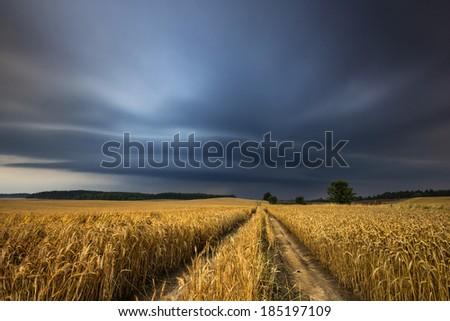 Kashubia, Poland /Stormy day.  - stock photo