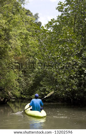 Kayaking through mangrove forest, Krabi Province, Southern Thailand - stock photo