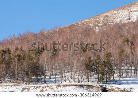 Kazakhstan. Tien Shan. Beautiful landscape with mountain views. Winter evening. - stock photo