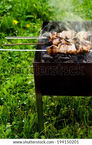 kebab cooked on coals on a green grass background. selective focus on kebab