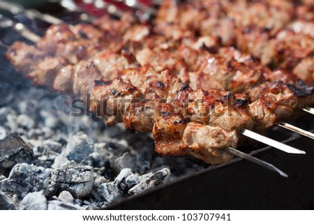 kebab prepares on the fire outdoors - stock photo