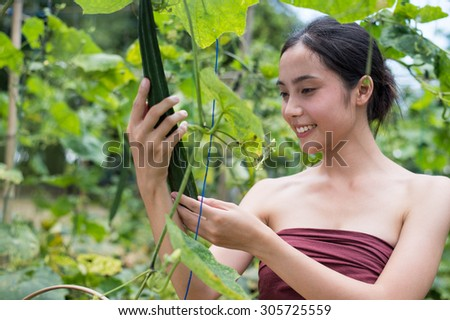 keep young gardeners the vegetable or dishcloth gourd - stock photo