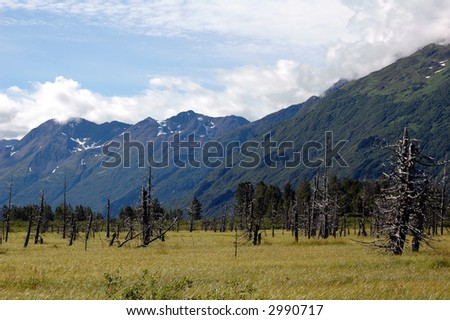 Kenai Peninsula, Alaska - stock photo