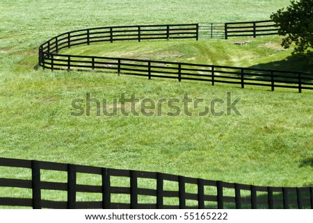 Kentucky Horse Farm near Lexington, KY USA - stock photo
