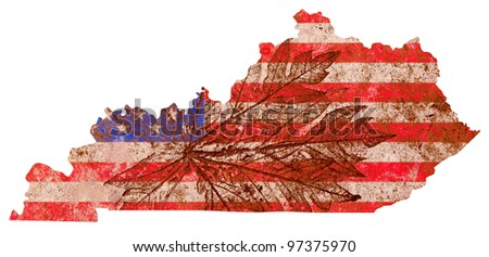 Kentucky state of the United States of America in grunge flag pattern isolated on white background - stock photo