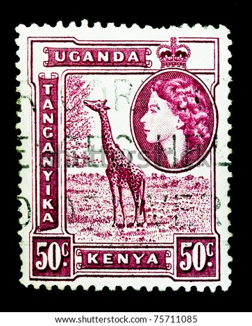 KENYA, UGANDA AND TANGANYIKA - circa 1950s: A stamp printed in East Africa showing image of Giraffe, circa 1950s - stock photo
