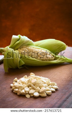 Kernels of white corn Choclo (Spanish), in English Peruvian or Cuzco corn, typically found in Peru and Bolivia, photographed with natural light (Selective Focus, Focus one third into the kernels)      - stock photo