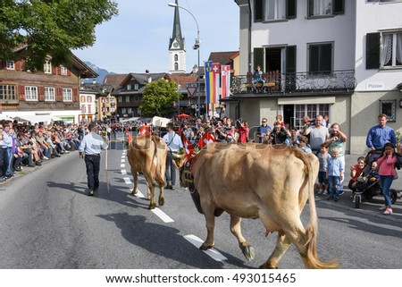 Kerns, Switzerland - 1 Oktober 2016: Farmers with a herd of cows on the annual transhumance at Kerns on the Swiss alps