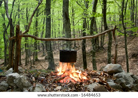 kettle on fire in spring forest - stock photo