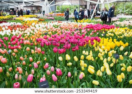 KEUKENHOF GARDEN, NETHERLANDS - APRIL 08: Inside the Willem-Alexander Pavillion. Keukenhof is the world's largest flower garden. Keukenhof Garden, Lisse, Netherlands - April 08, 2014.  - stock photo