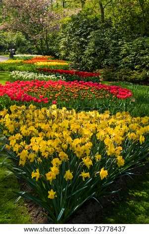 Keukenhof - Largest flower garden in Europe - Holland - stock photo
