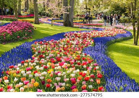 Keukenhof park in Netherlands - stock photo