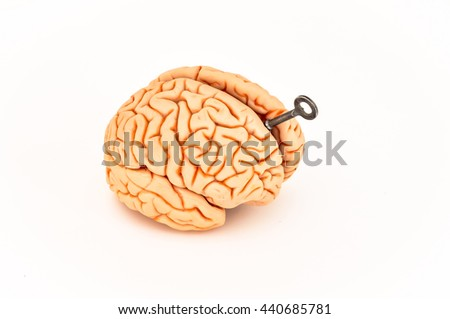 Key in on the brain,  isolated on white background