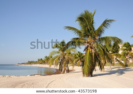Key West Beach, Florida Keys USA - stock photo