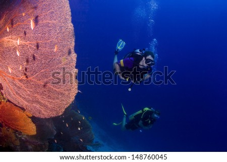 KHAO LAK, THAILAND - OCTOBER 25: Two scuba divers diving on a coral reef in Similan Islands on October 25, 2009 . Similan Islands are Thailand's premier dive destination.