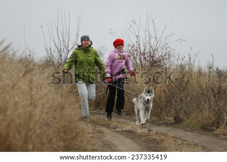 Kharkov, UKRAINE - November 15, 2014: Natalia Kobysheva during Happy Dog 250 m heats at Sled dogs dry land race Autumn Cup �¢?? 2014 - stock photo