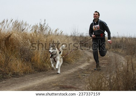 Kharkov, UKRAINE - November 15, 2014: Oleg Rudak at canicross heats during Men's 3100 m at Sled dogs dry land race Autumn Cup - 2014 - stock photo
