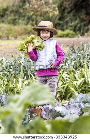 kid gardening concept - smiling young child enjoying holding a salad with gardener straw hat on in home vegetable garden in autumn season, outdoors view - stock photo