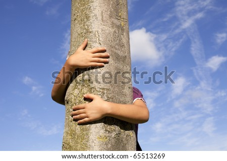 kid hands embracing a tree trunk - stock photo