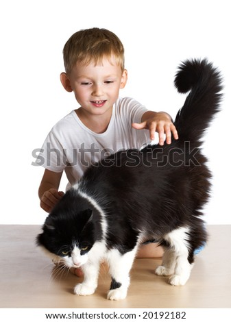 Kid pats a cat - stock photo