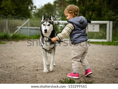 Kid playing with husky dog in dogpark