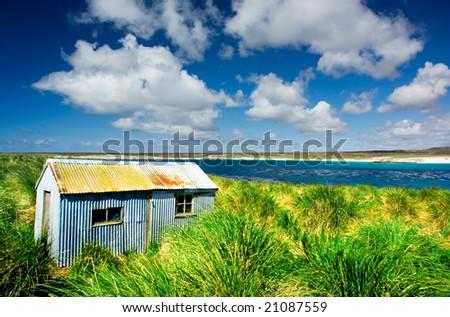 Kidney Island, Falkland Islands - stock photo
