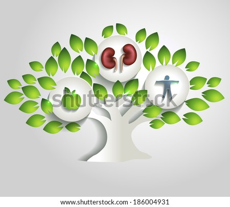 Kidneys and tree, healthy lifestyle concept. Healthy food; healthy kidneys and healthy human. - stock photo