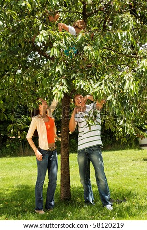 kids climbing on a tree - happy family outdoor - stock photo