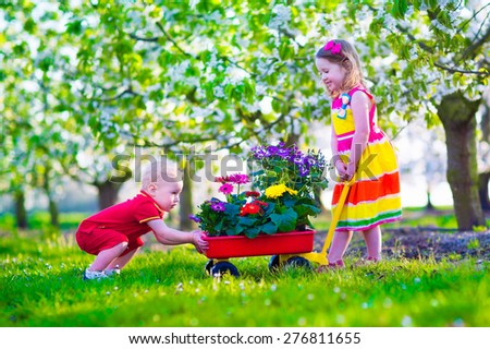 Kids gardening. Children playing outdoors. Little girl and boy working in the garden, planting flowers, watering flower bed. Child pushing wheel barrow. Family in blooming fruit tree orchard. - stock photo