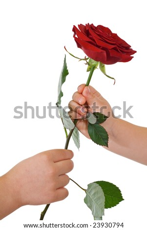 Kids hands with flower - isolated