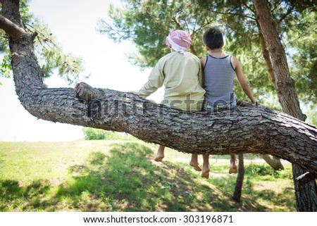 Kids sitting together on tree - stock photo