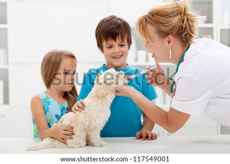 Kids with their pet at the veterinary doctor - fluffy dog receiving medication - stock photo