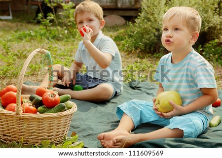 Kids with vegetables and fruits/Two little boys sitting on the grass. Nearby is a basket with tomatoes and cucumbers - stock photo