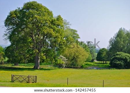 Killerton, Devonshire, England - stock photo