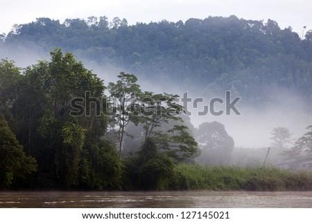 Kinabatangan River, Sabah. Borneo, Malaysia. - stock photo