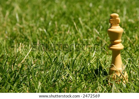 King chess piece in green grass - stock photo