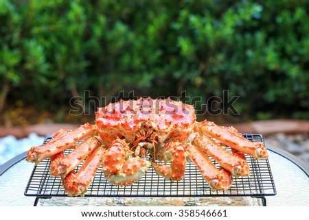 King crab, the famous food in Hokkaido, Japan. - stock photo