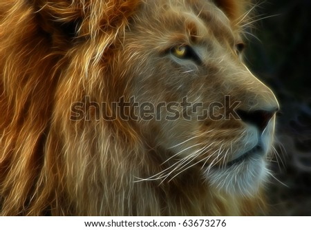 King of the Jungle A fractal filtered image of a lion. Horizontal. - stock photo