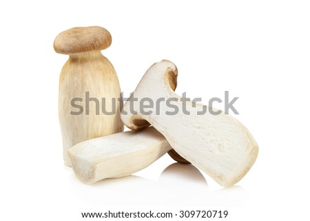 King Oyster mushroom (Eringi) isolated on white backgroud. - stock photo