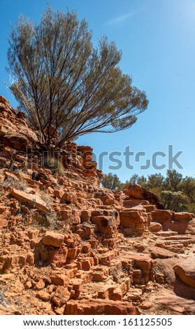 Kings Canyon rocks in outback Australia