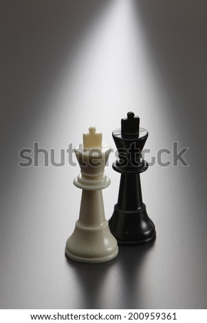 kings of the chess on the gray background