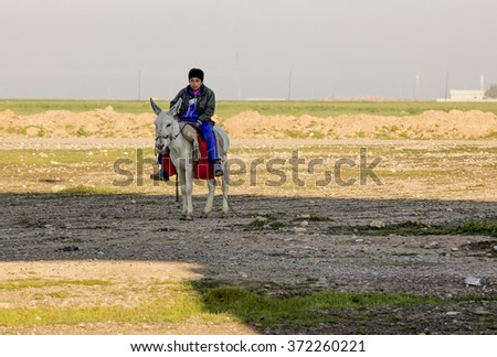 Kirkuk, Iraq - February 1, 2016: Syrian boy in Iraqi desert works as shephered riding white donkey in winter - stock photo