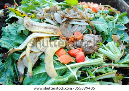 Kitchen and garden waste on a home compost heap.                     - stock photo