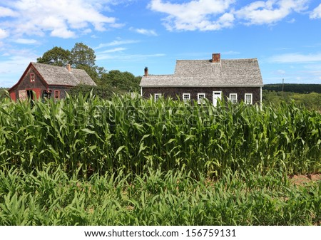 Kitchen garden for an historic farmhouse - stock photo